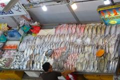 Tekka Centre poisson
